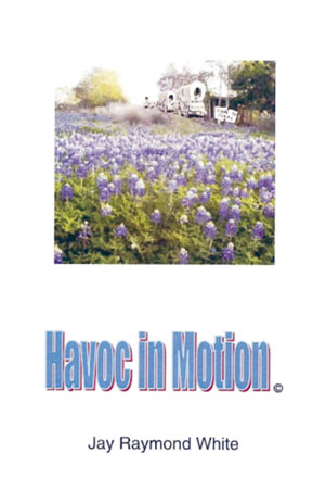 havoc-in-motion2